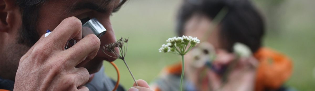 © Les Ecologistes de l'Euzière